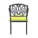 504141-Hanamint-Biscayne-Dining-Chair-Back-Green-Cushion-1.jpg