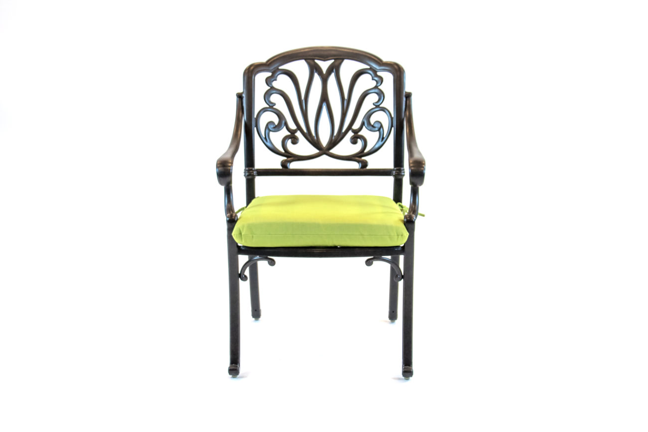 504141-Hanamint-Biscayne-Dining-Chair-Front-Green-Cushion-1.jpg