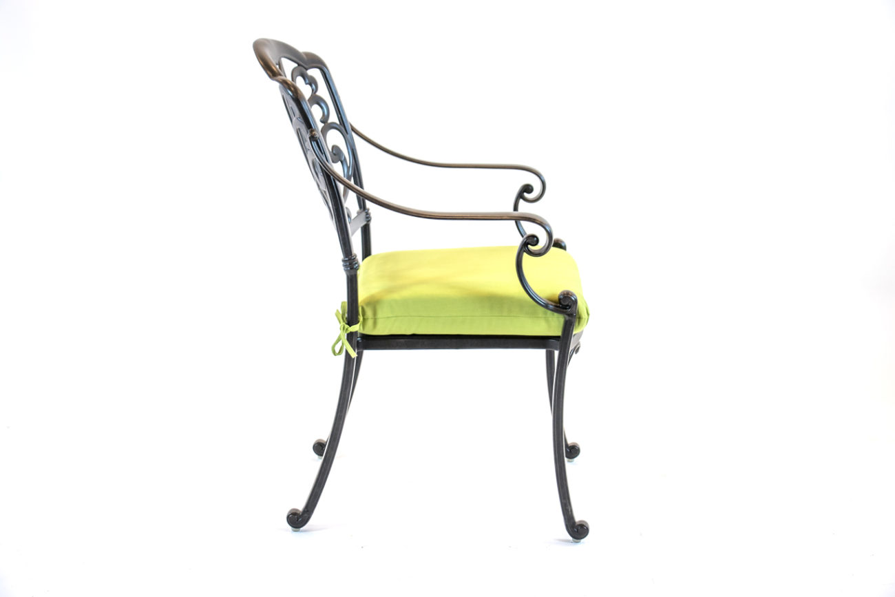 504141-Hanamint-Biscayne-Dining-Chair-Side-Green-Cushion-1.jpg